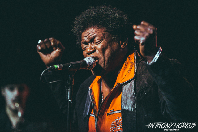 Charles Bradley & His Extraordinaires returns to Grand Rapids for Founders Fest. (Photo/Anthony Norkus)