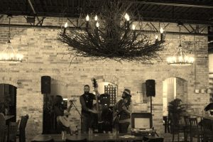 Harmonious Harmony Hall: Megan Dooley & The Last Roots performed at the venue recently. (Photo/Anna Sink)