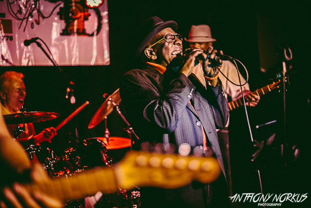 Getting to the Roots of the Blues: Root Doctor plays the Tip Top Deluxe on Saturday. (Photo/Anthony Norkus)