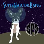 "Scott Pellegrom, ""SuperNaturalBang"""
