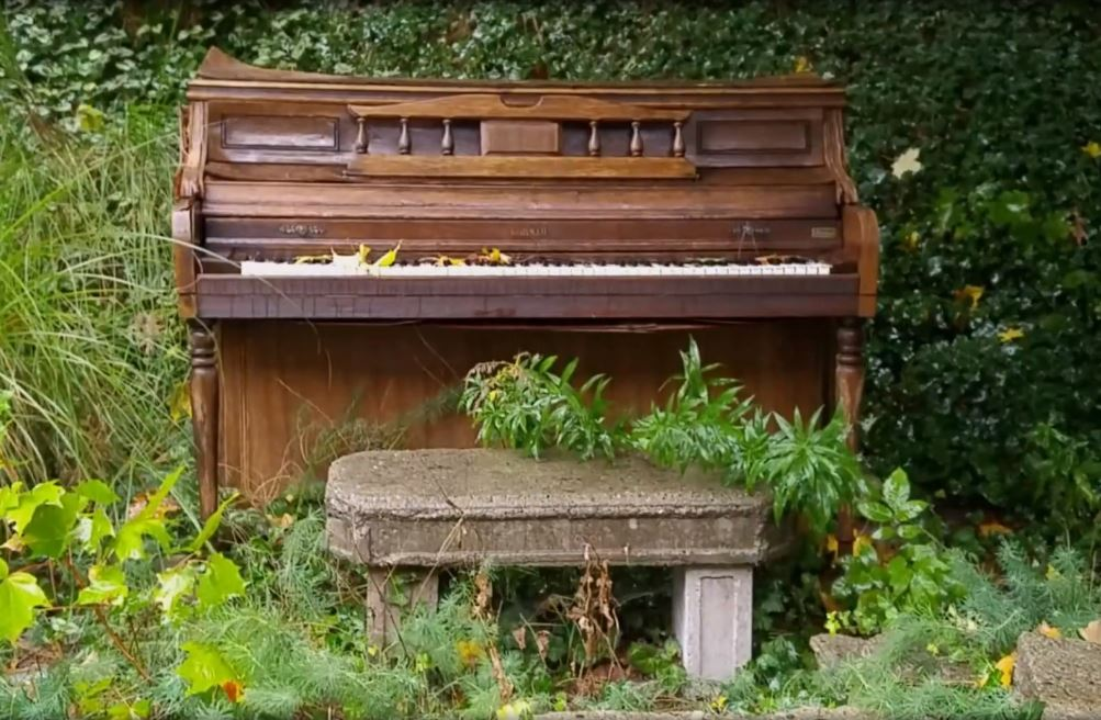 West Michigan Music Video of the Week: Jim Spalink's stunning 'eulogy for an old piano'