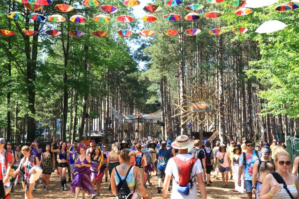 Electric Forest at the 10-year mark: Jeremy Stein responds to the 'Forest Family'